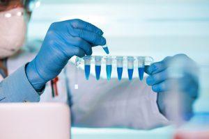 Laurearsi in ingegneria biomedica