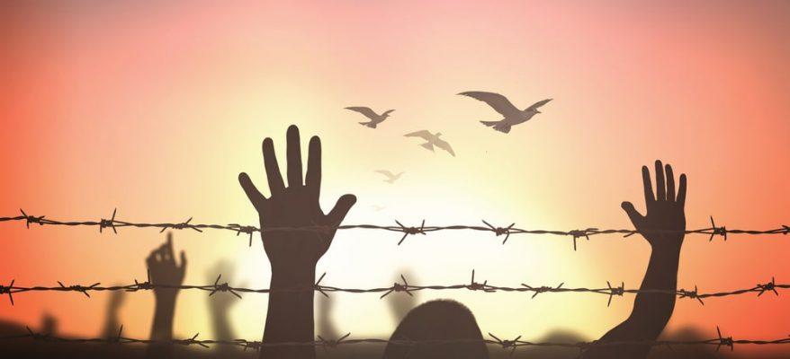 leggi in difesa dei diritti umani